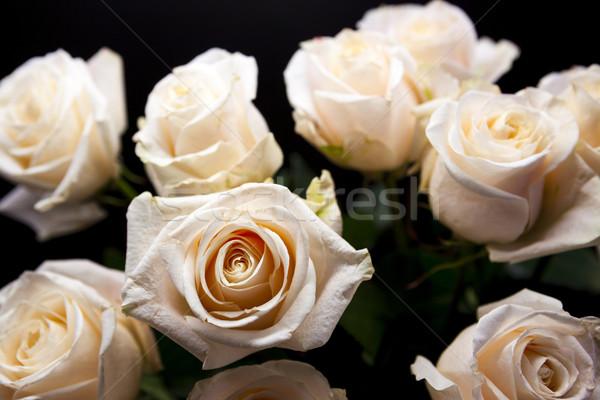 Mooie boeket roze rozen bruiloft Stockfoto © mcherevan