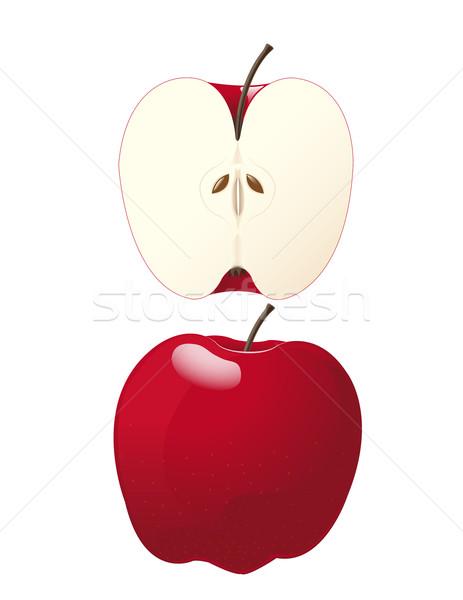 Vektor alma egész fél étel gyümölcs Stock fotó © Mcklog