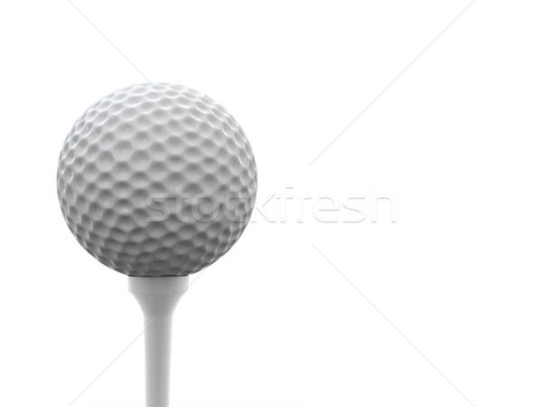 мяч для гольфа оказывать поддержки белый гольф весело Сток-фото © Mcklog