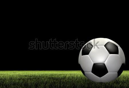Klasszikus futball render fűmező fű futball Stock fotó © Mcklog