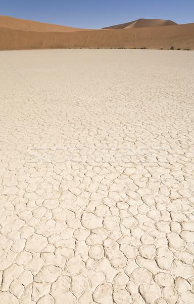 Kuru gezegen ölü çöl atış bo Stok fotoğraf © mdfiles