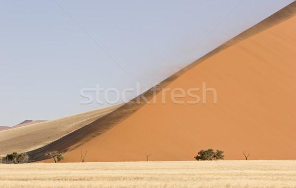 Büyük kumul güçlü rüzgâr akşam ışık Stok fotoğraf © mdfiles