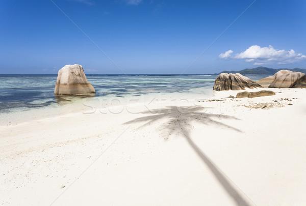 Fehér tengerpart árnyék kókuszpálma LA égbolt Stock fotó © mdfiles