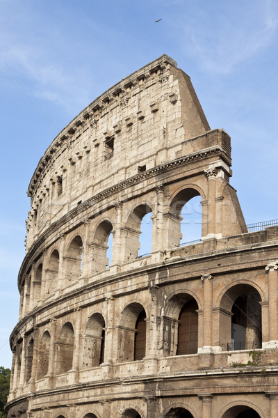 Colosseum Stock photo © mdfiles