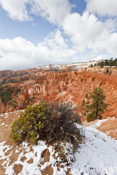 Kanyon kar park Utah ABD manzara Stok fotoğraf © mdfiles
