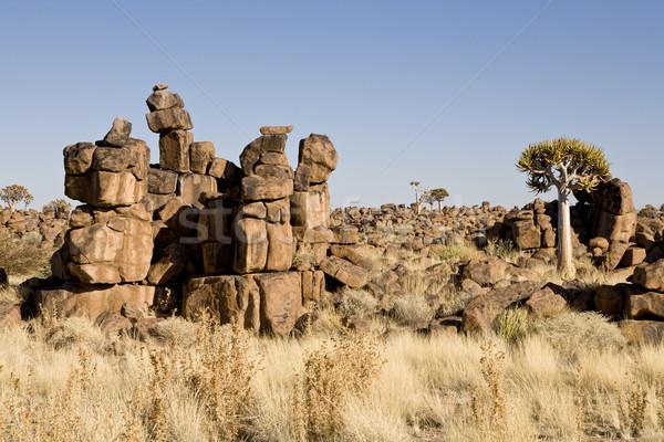 Oyun alanı erozyon cumhuriyet Namibya güney Afrika Stok fotoğraf © mdfiles