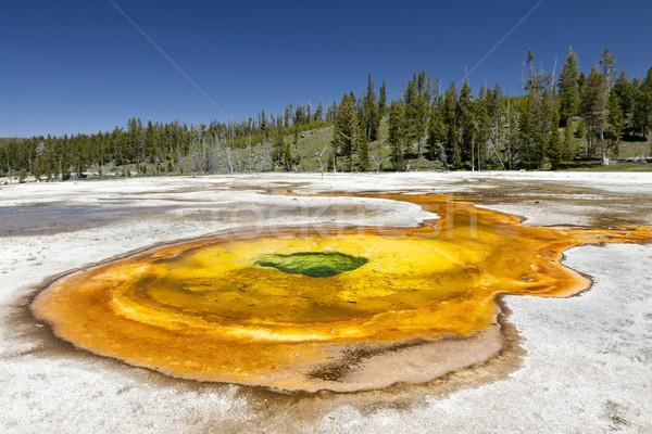 Bahar termal banyo şofben park ABD doğa Stok fotoğraf © mdfiles