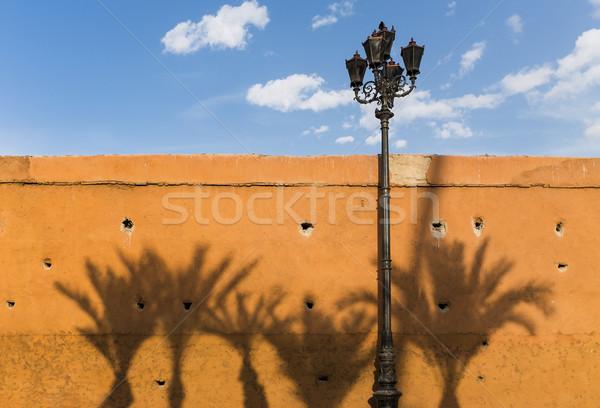 壁 影 ヤシの木 王国 モロッコ 北 ストックフォト © mdfiles