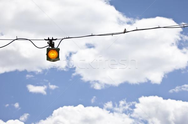 Pássaro arame amarelo aviso luz nuvens Foto stock © mdfiles