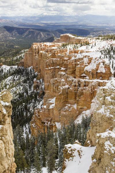 Kanyon park kar Utah Amerika Birleşik Devletleri manzara Stok fotoğraf © mdfiles