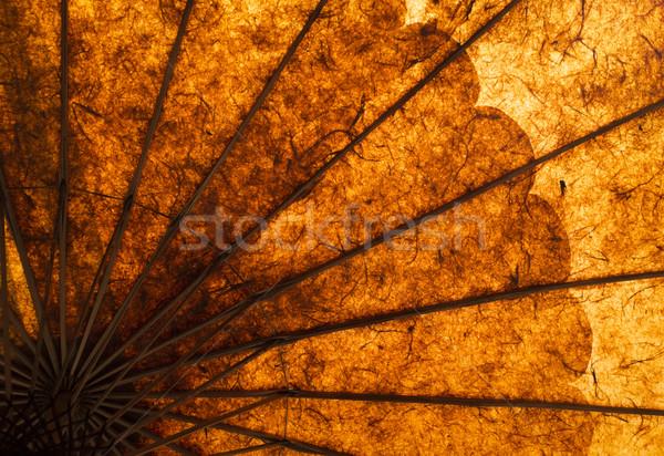 Esernyő kézzel készített napfény papír gyönyörű meleg Stock fotó © mdfiles