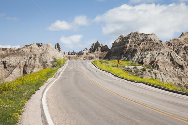 út park Dél-Dakota USA égbolt kék Stock fotó © mdfiles