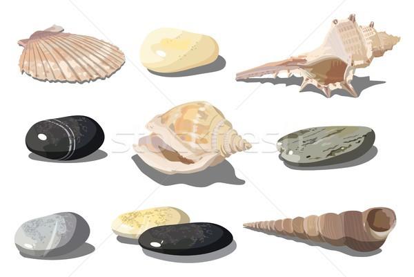 Vector Seashell and sea pebbles Stock photo © mechanik