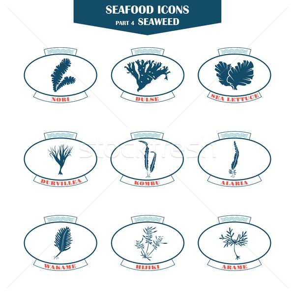 Wodorost owoce morza ikona puszka używany Zdjęcia stock © Mediaseller