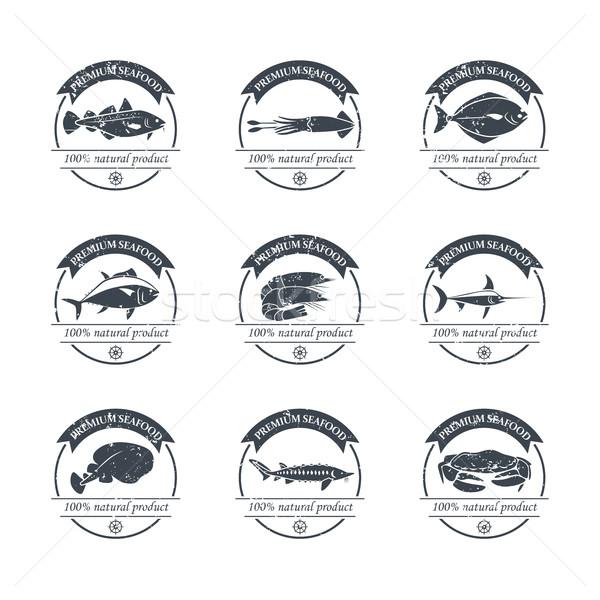 Deniz ürünleri logolar şablon mükemmel ayarlamak rozetler Stok fotoğraf © Mediaseller