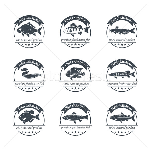 Perfect set of fish farming logos Stock photo © Mediaseller
