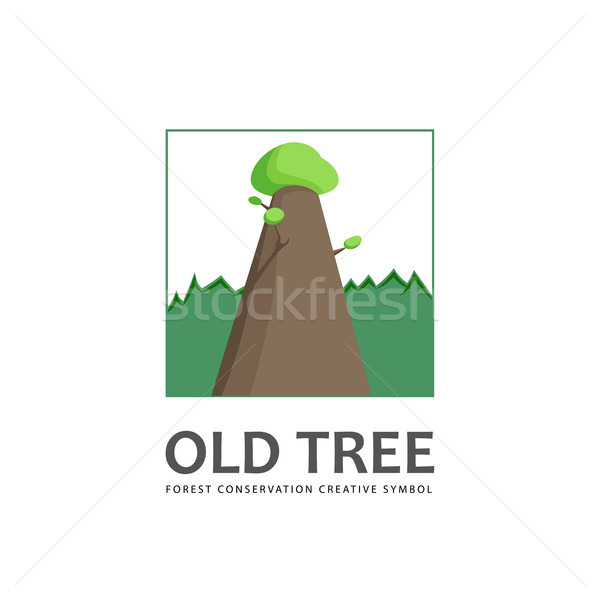 старые дерево логотип шаблон лес сохранение Сток-фото © Mediaseller