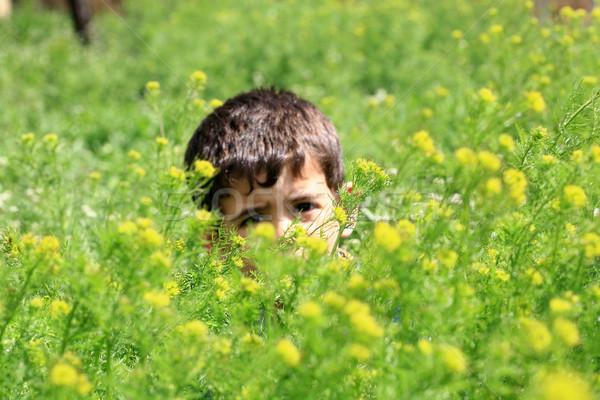Weinig jongens gezicht groene persoon glimlachend Stockfoto © mehmetcan