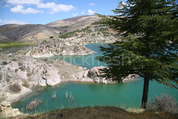 Hemel water technologie berg brug industrie Stockfoto © mehmetcan