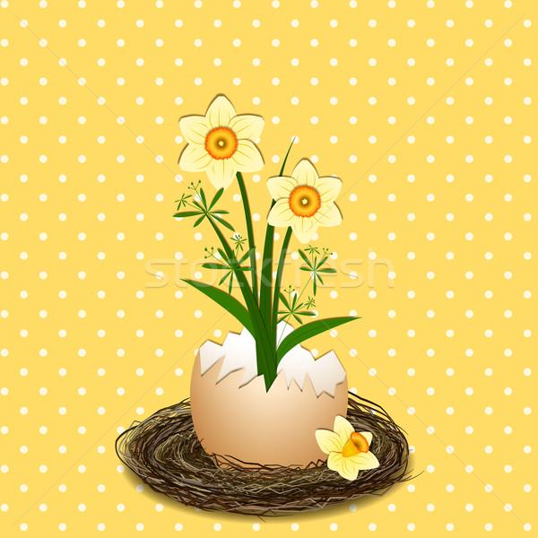 Easter Illustration Yellow Daffodil Flower on Polka Dot Stock photo © meikis