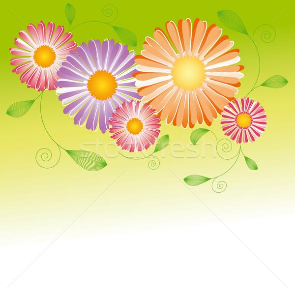 Photo stock: Résumé · printemps · coloré · Daisy · fleurs · papillon