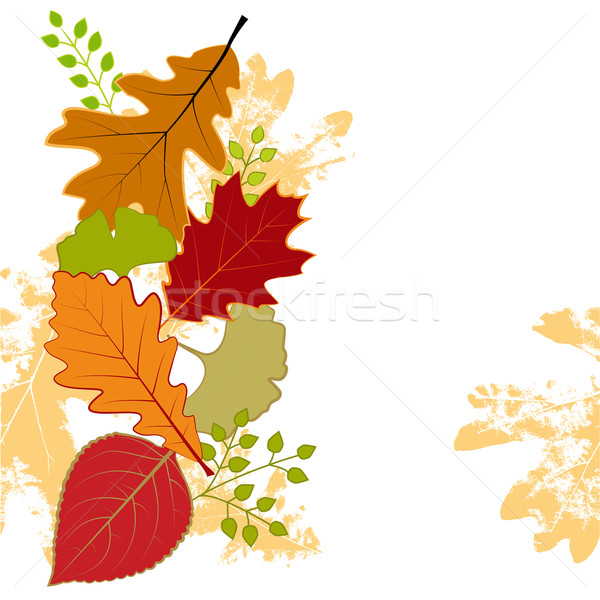 Abstract colorful autumn leaf greeting card Stock photo © meikis