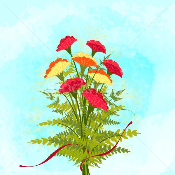 весна красочный гвоздика цветок любви лист Сток-фото © meikis