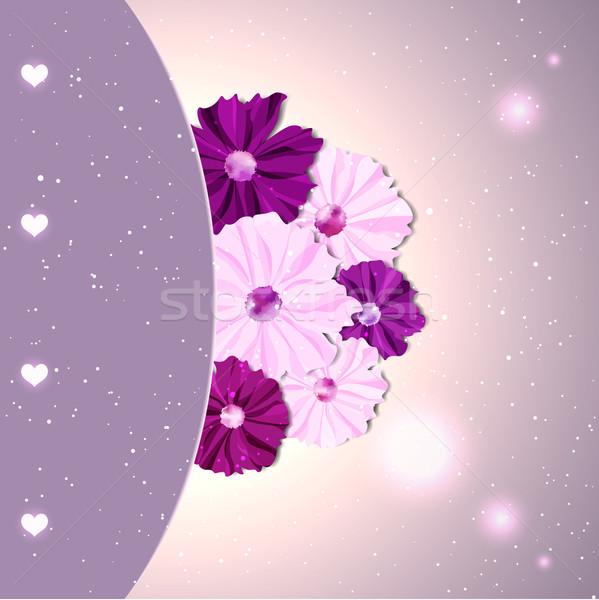 Springtime Colorful Cosmos Flower Stock photo © meikis