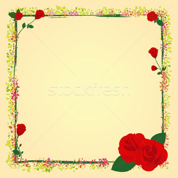 Foto stock: Verão · rosa · jardim · flor · quadro · primavera