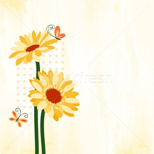 Photo stock: Printemps · coloré · Daisy · fleur · papillon · printemps
