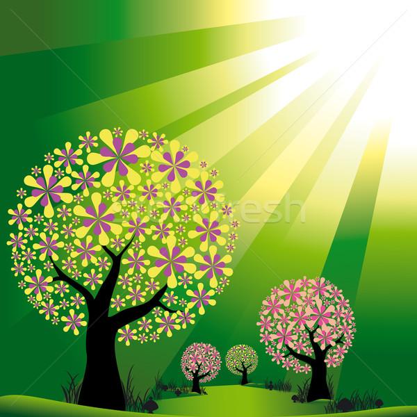 Résumé arbres vert lumière fleur Photo stock © meikis