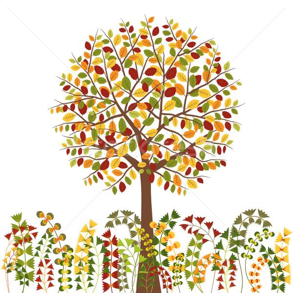 Coloré automne arbre herbe résumé nature Photo stock © meikis