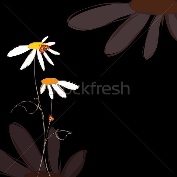 Tavasz nyár virágmintás fekete virág absztrakt Stock fotó © meikis