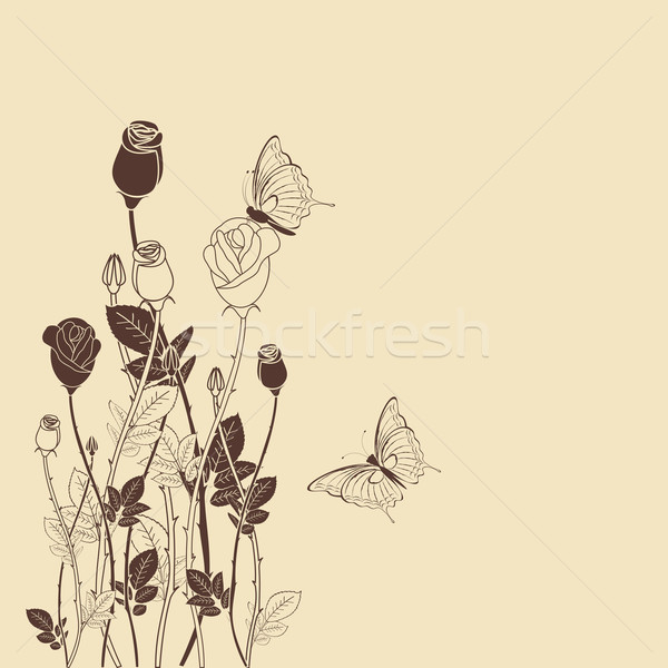 Rose flower with butterfly background Stock photo © meikis