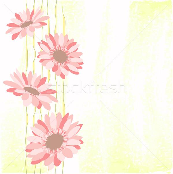 Photo stock: Printemps · coloré · Daisy · fleur · vert · printemps