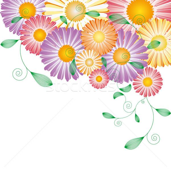 Printemps coloré fleur carte de vœux printemps été Photo stock © meikis