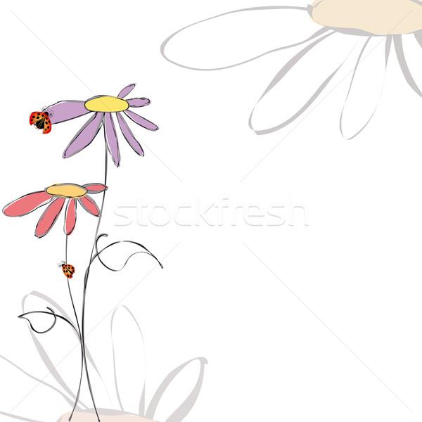 Printemps été floral blanche design fond Photo stock © meikis