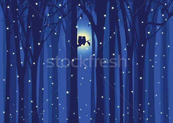 Winter illustration love owl in snowing forest Stock photo © meikis