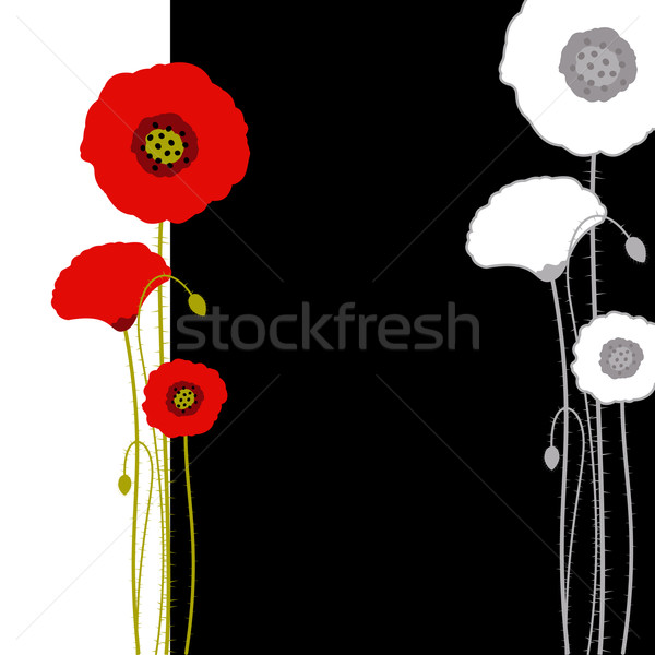 Abstract red poppy on black and white background Stock photo © meikis