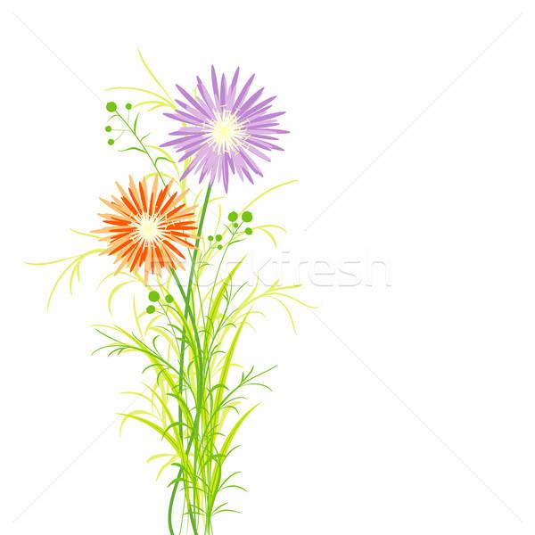 Bahar renkli çiçek tebrik kartı arka plan turuncu Stok fotoğraf © meikis