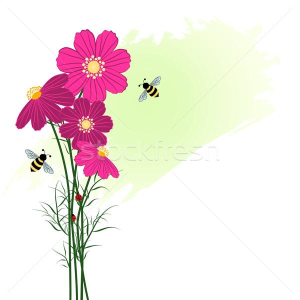 Printemps coloré fleur abeille fond Daisy Photo stock © meikis
