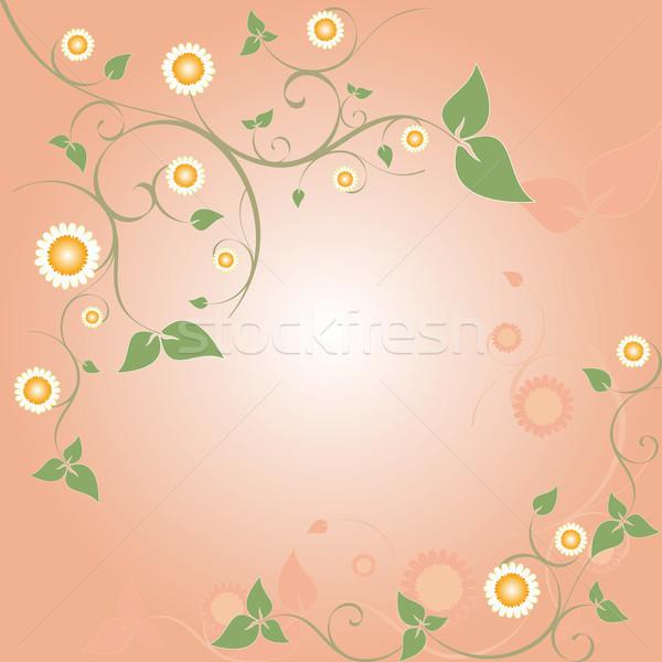Printemps floral cadre rose résumé Pâques Photo stock © meikis