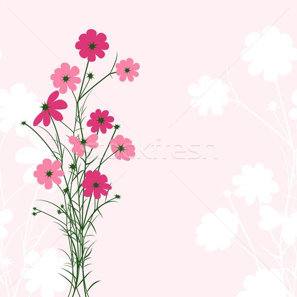 Photo stock: Printemps · coloré · fleur · rose · printemps · résumé