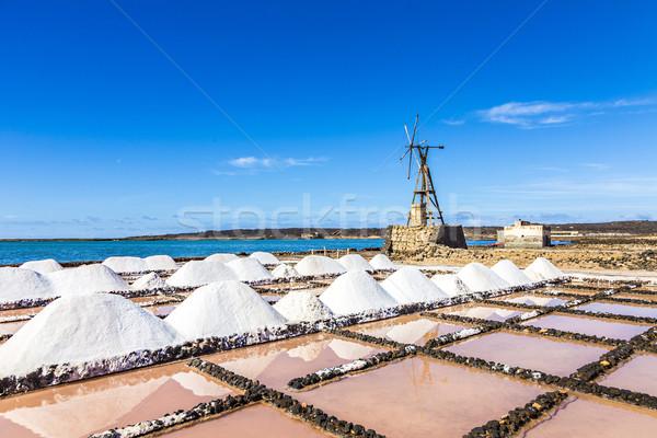 salt piles in the saline of Janubio in Lanzarote with old toteen Stock photo © meinzahn