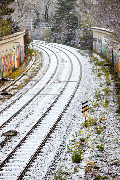 snow covered rails in the city Stock photo © meinzahn
