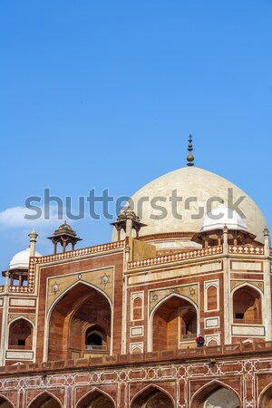 Grób Delhi Indie drzewo trawy niebieski Zdjęcia stock © meinzahn