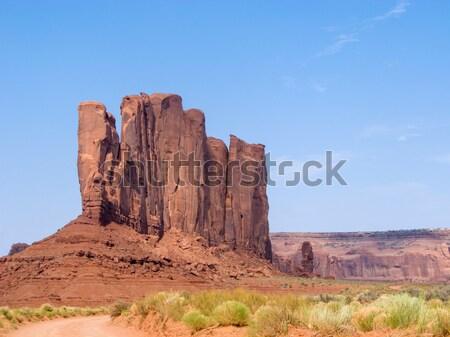 Camelo vale cênico Foto stock © meinzahn