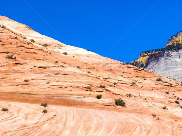 Zion National Park Stock photo © meinzahn