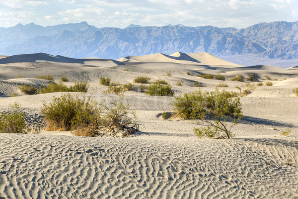 desert landscape in the death valley without people Stock photo © meinzahn