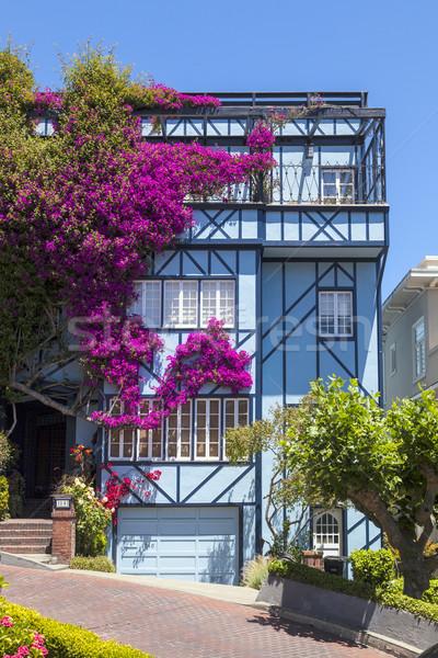 表示 通り 世界 サンフランシスコ カリフォルニア 花 ストックフォト © meinzahn